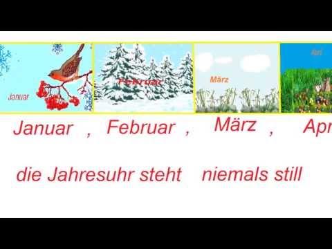 Приколы с названиями животных - видео с животными