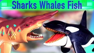 Learn Sea Animal Names with Ocean Creatures Shark Whale Fish Toys For Kids