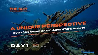 A unique Curaçao Snorkeling Adventure Begins | Day 1 | The Suit Curacao Vlog