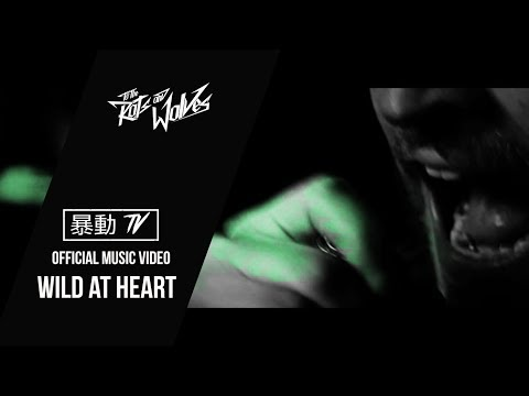 To the Rats and Wolves- Wild at Heart (OFFICIAL MUSIC VIDEO)