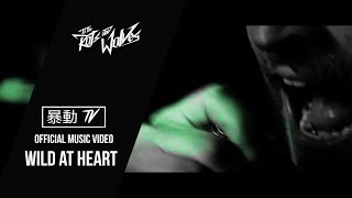 Watch To The Rats  Wolves Wild At Heart video