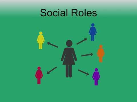 Socialization Lecture