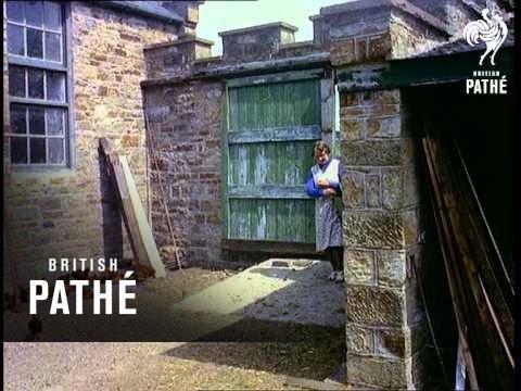 Cut Price Castle  (1956)
