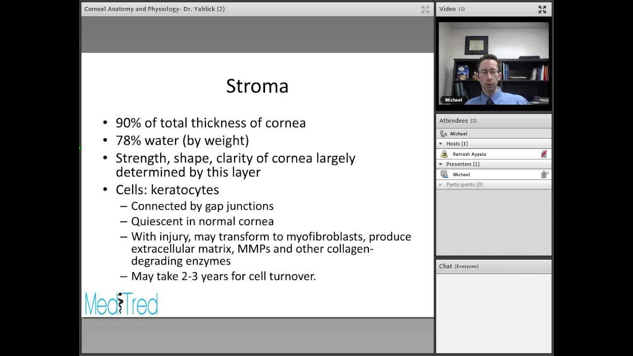 Full Lecture: Corneal Anatomy and Physiology - YouTube