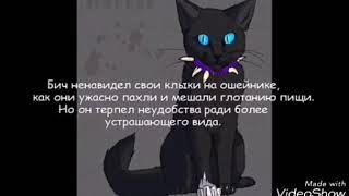Коты воители факты| Бич ненавидел когти и зубы на своём ошейнике?