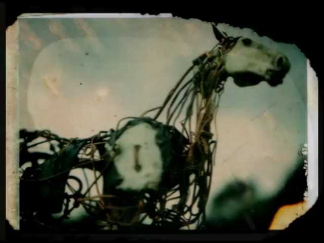 sparklehorse-heart-of-darkness-video-by-christina-vantzou-christina-vantzou