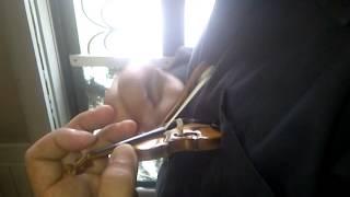 【ビックリ】世界一小さなバイオリンvs.世界一大きなバイオリン