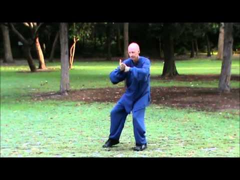 Wu Tai Chi 42 Movement Slow Form