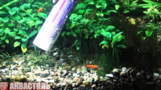 Аквариумистика. Очистка грунта и подмена воды в аквариуме самодельным сифоном.(, 2013-06-12T07:19:07.000Z)