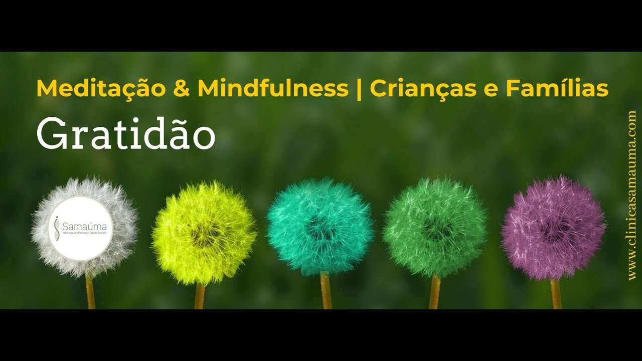 Vídeo: Meditação & Mindfulness - Gratidão