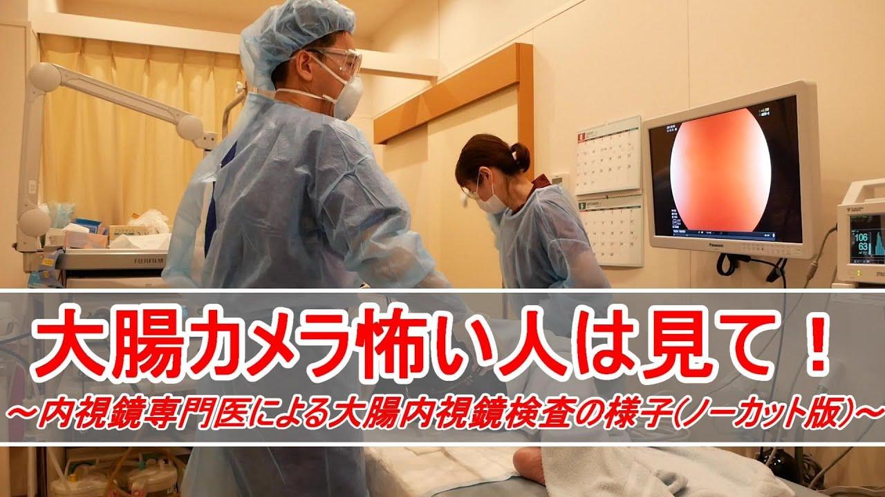 大腸カメラ検査の様子