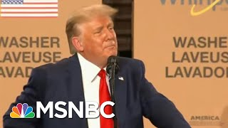 The Cult Of Trump Rides To The President's Defense On His Journey To Thighland | All In | MSNBC