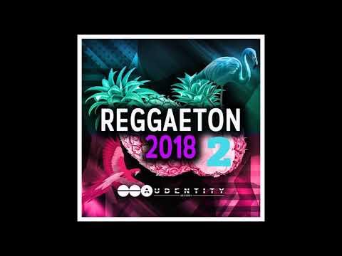 Reggaeton 2018 Vol 2 Samplepack [Royalty Free Melodies, Vocals, Kits and more]