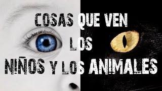 VISITA AL ABOGADO | HAY COSAS QUE NO SE PUEDEN PERMITIR... & HAUL ROPA ELAIA | Vlogs diarios