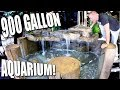 900 GALLON TURTLE AQUARIUM SETUP with KING OF DIY FOR REPTILE ZOO!! | BRIAN BARCZYK