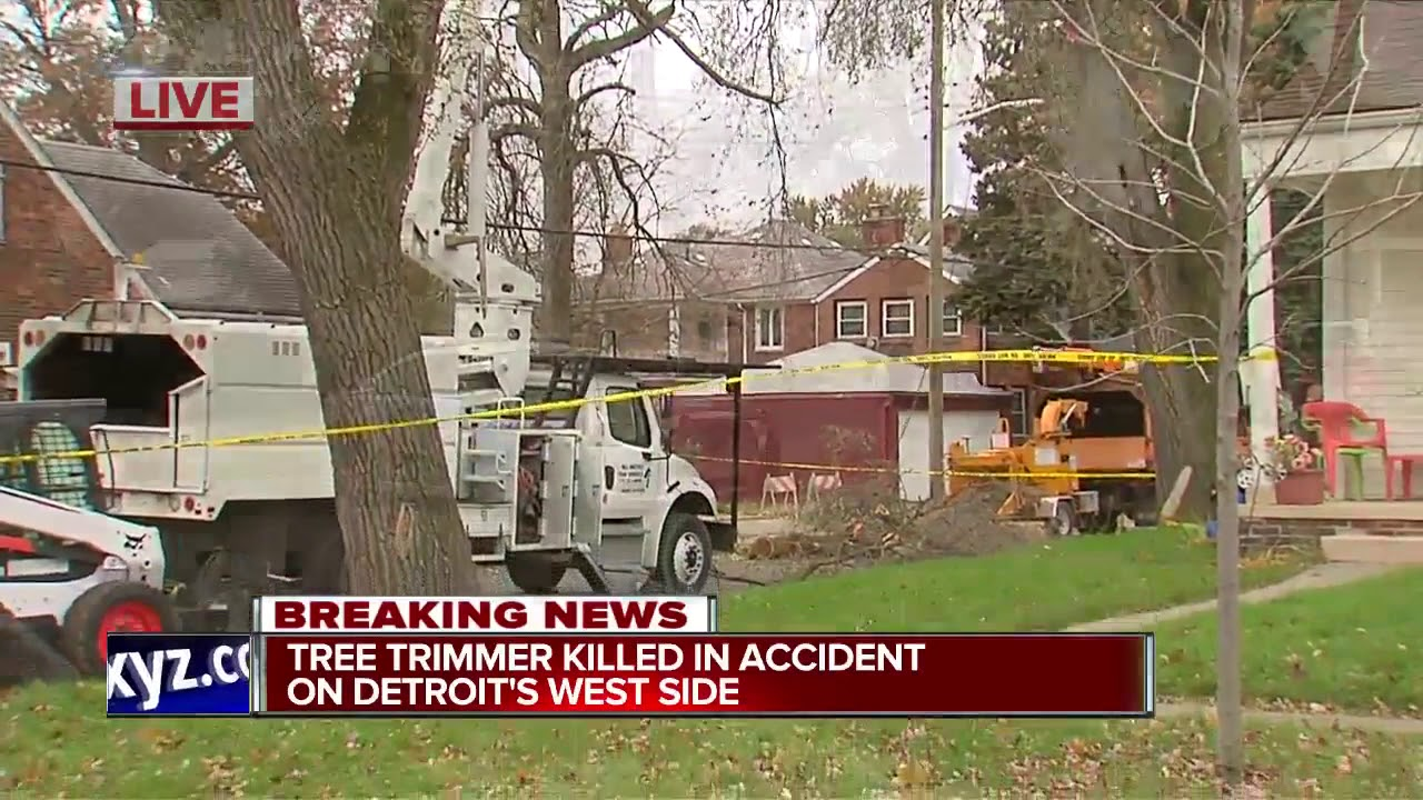 Tree trimmer dies after fall while cutting trees at Detroit home