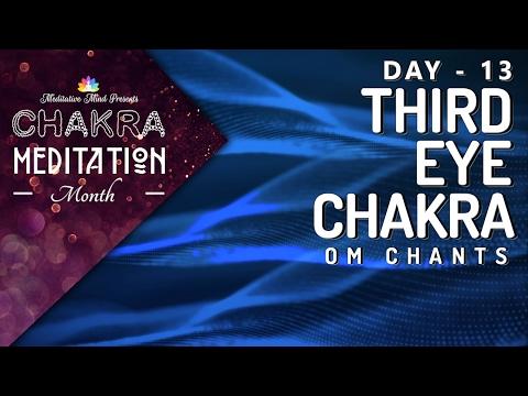 Chakra Seed Mantra Chants | OPEN THIRD EYE CHAKRA 'OM' Mantra Chanting Healing Meditation
