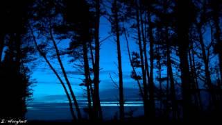 Gambar cover Deep Forest - Sweet Lullaby (Peter Gun's Akasha Mix)