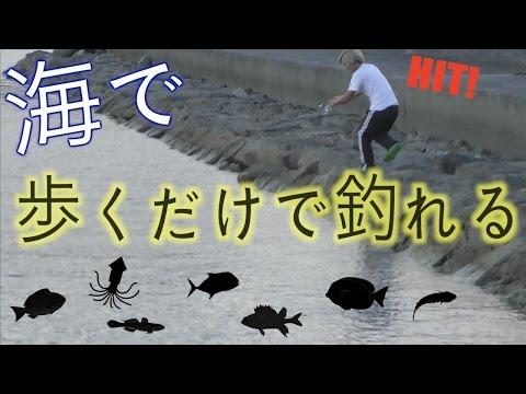歩くだけで釣れる方法で図鑑を埋める!【魚図鑑を埋めろ4話】