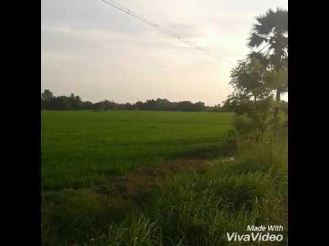 Beautiful village in tamilnadu
