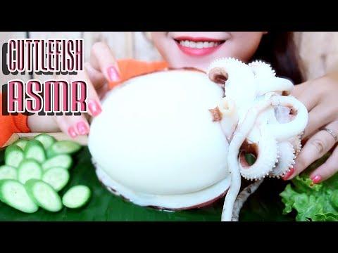 ASMR Giant Cuttlefish (extreme crunchy EATING SOUNDS) No Talking part 02   LINH ASMR