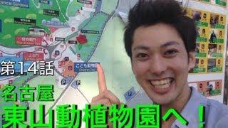 東山動植物園でアジアゾウと触れ合おう!