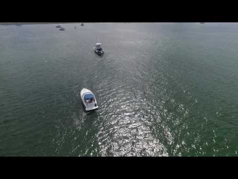 Lovell Island 60FPS Drone Footage  1080p