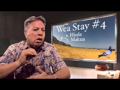 Hawaiian - The Daily Pidgin - Wea Stay?