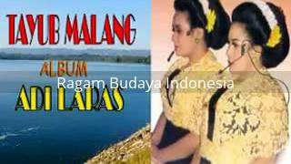 Video [ full album ] Adi Laras - Tayub Malang - edisi musik download MP3, 3GP, MP4, WEBM, AVI, FLV Mei 2018