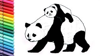Drawing and Coloring Panda - Learn to Draw Wild Animals From China - Color Pages for Childrens