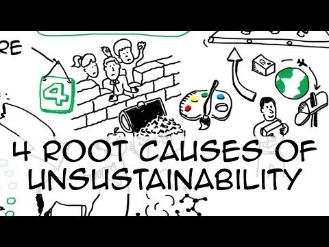 4 root causes of unsustainability