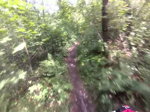 Bradley Palmer State Forest single track downhill run