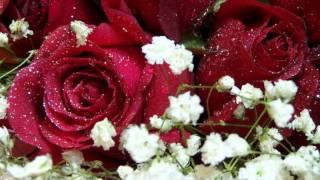 Le pouvoir des fleurs ( LES ENFOIRES ).wmv