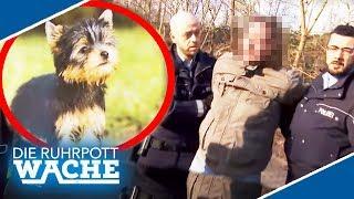 Abgezockt beim Hunde-Kauf! Wer steckt hinter der Betrüger-Masche? | Die Ruhrpottwache | SAT.1