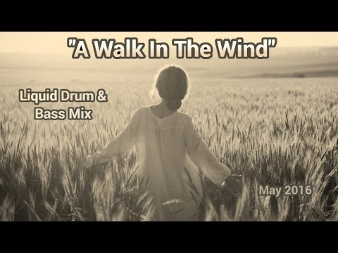 "► ""A Walk In The Wind"" - [Liquid Drum & Bass Mix] - May 2016"