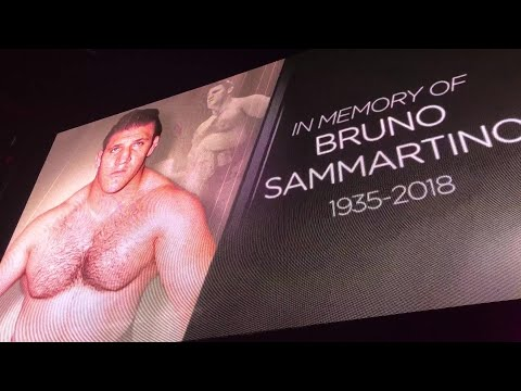 WWE honors the late Bruno Sammartino with a 10-bell salute in South Africa