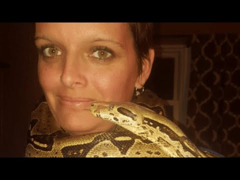 Indiana Woman 'strangled To Death By Huge Python' In House Filled With 140 Snakes