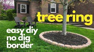 diy No Dig Border TREE RING