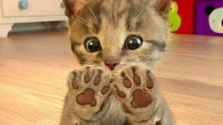 Ми-ми-мишки Маленький мимишный КОТЕНОК развлекательное видео для детей СИМУЛЯТОР котика #ПУРУМЧАТА