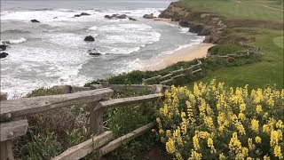 RITZ-CARLTON Half Moon Bay - What To Eat, See, Do in One Day