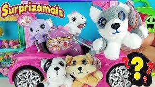 Шарики СЮРПРИЗЫ мягкие игрушки зверюшки Surprizamals Series 3 Ball Видео для детей  Toys
