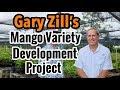 Gary Zill's Mango Variety Development Project