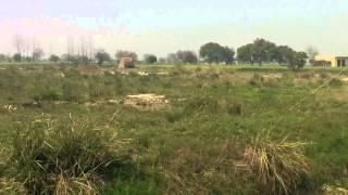 Vedic City Hi Tech Township Greater Noida. plots @ 08285777703