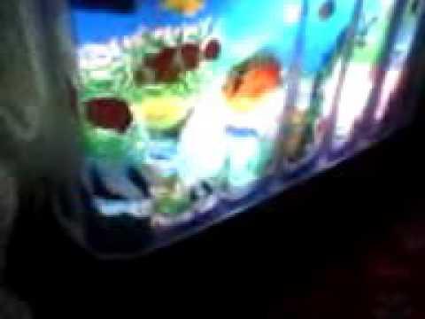 Марин и его друзья подводные истории серия 1