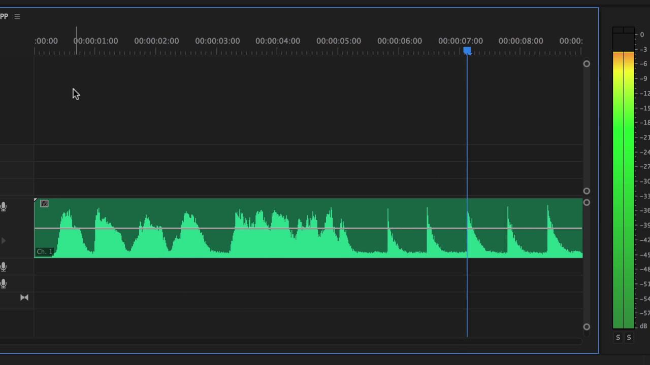 Remove Echo in Premiere Pro