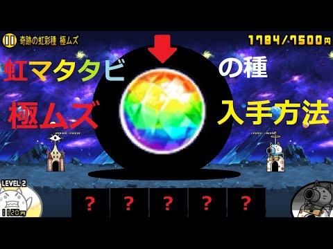 戦争 にゃんこ 虹 大 マタタビ の 進化
