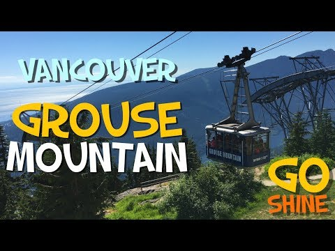 GROUSE MOUNTAIN | Gondola | Bears | ZipLine & More! | Vancouver Sights (GoShine)