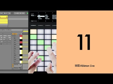 """<span class=""""title"""">Ableton Live 11: Key and scale sync on Push</span>"""