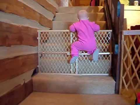 15 impossible videos of babies and toddlers escaping from cribs