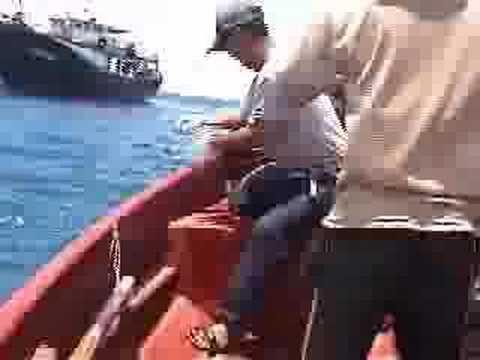 徙手釣鯊 Hunting shark by hands